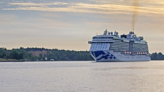 The cruise ship Regal Princess arriving in Stockholm in the early morning (Franz Airiman) Tags: båt boat ship fartyg kryssningsfartyg cruiseship regalprincess princesscruises saltsjön stockholm sweden scandinavia