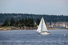 Sailing on by (CanMan90) Tags: sailboat ocean mountains harbour nanaimo britishcolumbia vancouverisland cans2s canon rebelt3i efs55250mmf456isstm spring may 2018