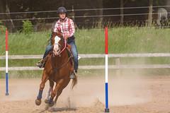 JBC_5516.jpg (Jim Babbage) Tags: krahc horseshow appaloosa horses 2018 bethany
