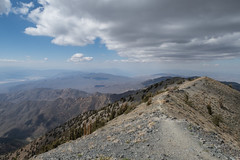 Telescope Peak (Dancing.With.Wolves) Tags: death valley telescope peak bristlecone trees views spring snow desert high country national park rough roads warm no wind clouds hike day time 2018 good highest point trail