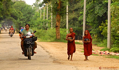 11-10-06 Myanmar (247) R01 (Nikobo3) Tags: asia myanmar burma birmania amarapura monywa culturas color social monjes monks rural street paisajeurbano travel viajes nikon nikond200 d200 nikon7020028vrii nikobo joségarcíacobo people gentes