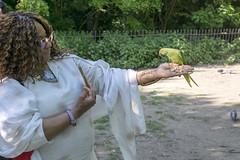 DSC_2201 (photographer695) Tags: wintrade rest recreation hyde park london feeding parakeet birds with nicole ross