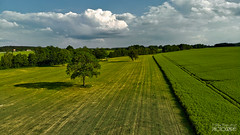Zbysov, Czech Republic (pavel conka) Tags: zbysov czech republic conka pavel nature landscape krajina trees green color 2018 clouds mavic air fly cam dron