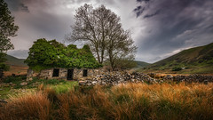 Home Sweet Home X (Einir Wyn Leigh) Tags: landscape natural dwelling rural wales snowdonia walking love derelict mountains rugged weather