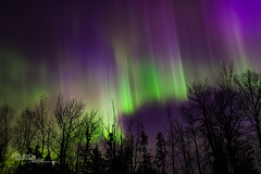 Ionized Gas III (Images by Beaulin) Tags: grandportageindianreservation nightsky starscape auroraborealis starrysky grandportage stars astrophotography starphotography northernlights cookcounty nightscape starrynight minnesota