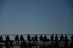 2018 Tony Roper Memorial with the Cash Money Super Dirt Series (Adventurer Dustin Holmes) Tags: 2018 sport sports car races racing midwayspeedway memorialdayweekend events event tonyropermemorial cashmoneysuperdirtseries dirttrack lebanonmo lebanonmissouri lacledecounty missouri ozarks bleachers silhouette silhouettes