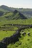 Parkhouse Hill (l4ts) Tags: landscape derbyshire peakdistrict whitepeak upperdovevalley parkhousehill highwheeldon sheep drystonewalls