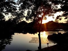 Twilight on the horizon (Cassan Weish) Tags: sunset shine sun set pond lake shadow s reflect twilight tree horizon nice random visual nrv