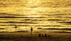 Each in his own way (Wöwwesch) Tags: sunset golden reflections silhouettes enjoy beach people noordzee northsea interesting walk evening