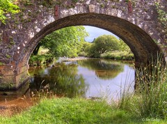 West Dart at Two Bridges (Ian Gedge) Tags: england uk britain devon dartmoor water twobridges dart river bridge arch