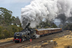 Departing Picton (Tom Marschall) Tags: rail railroad railway travel heritage australia sydney nsw new south wales canon photography steam train loco locomotive engine cloud cloudy smoke