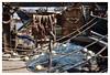 Imbroglio... (isabelle.bienfait) Tags: morocco barrage maroc agadir pêche filet corde soussmassa afrique mer nikon35mmf18 isabellebienfait nikond7200
