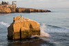 Sunset Cliffs Mermaid (Photos By Clark) Tags: northamerica california location canon2470 canon5div unitedstates cities sandiego locale places where us mermaid pacific oceanbeach cliff rock wave splash lightroom