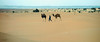 Le touareg (KRAMEN) Tags: touareg camello dromedario desierto arena paisaje camellero desert hiking sand dromédaire camels morocco marruecos ouladedriss