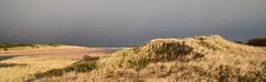Dunes (Innesboy) Tags: dunes sanddunes riverdonestuary riverdon don estuary aberdeenbeach aberdeen beach scotland grass grassy fence fencepost greysky storm stormy stormyday sea stormysky landscape andrewinnes