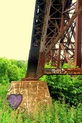 Don Valley Bike Tour (wyliepoon) Tags: don valley steel trestle bridge railway railroad canadian pacific seton park north york toronto