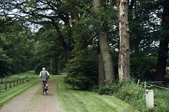 Ter Borg (Jos Mecklenfeld) Tags: sellingen terborg westerwolde groningen nederland niederlande netherlands landscape landschaft landschap forest wald bos ruitenaa river rivier fluss nature natur natuur hiking wandern wandelen sonya6000 sonyilce6000 sonyepz1650mm selp1650 man fietsen cycling fahrrad radfahren bicycle nl