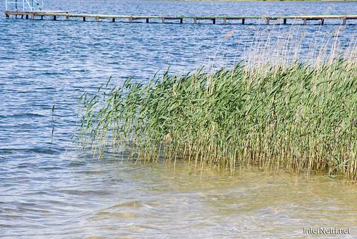 Шацький Національний Природний Парк Озеро Пісочне Прозора вода InterNetri  Ukraine 263