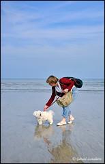 A la plage (gérard lavalette) Tags: plage mer chien bichonmaltais femme ciel gérardlavalette photographe paris letréport normandie pet dog woman beach sea misstress