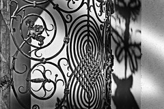 ...fence and shadow... (christikren) Tags: fencedfriday fence sw shadow blackwhite christikren detail light monochrome austria schloss castle panasonic grafenegg hff