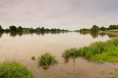 A boat crossing the Loire (christian.grelard) Tags: boat loirevalley loire loircher bateau river fleuve water wild canon 80d tourism travel landscape