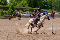 JBC_6260.jpg (Jim Babbage) Tags: krahc bethany appaloosa horses horseshow 2018