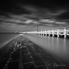 Nieuwpoort Pier VII (Alec Lux) Tags: bw beach belgium blackandwhite blackandwhitephotography breakwater coast coastline concrete groyne jetty landscape landscapephotography longexposure longexposurephotography nature naturephotography nieuwpoort ocean pier poles pontoon sand scenic sea seascape seascapephotography sky smooth water waves be