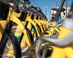 (for.eMike) Tags: bike bici bicycle fuji fujifilm fujifilglobal xt20 xf23mmf2