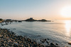 DSC_4276.jpg (八戸ノ本室) Tags: 青森県 種差海岸 蕪島 八戸市
