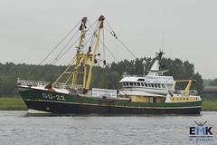 GO 22 'Jan Cornelis' (Romar Keijser) Tags: kotter visserij emk eendracht maakt kracht protest amsterdam dam aanlandplicht discard ban