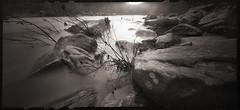 Winter on the Narrows (DRCPhoto) Tags: zeroimage612b pinhole lenslessphotography kodakbw400cn 120film cheatriver westvirginia