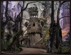 The Tower Of Crows (Daniel Arrhakis) Tags: mysticsurrealism gothicsurrealism mystery kingdomofkrudhyn