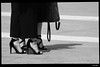 IMG_6855 (anto-logic) Tags: donna ragazza meravigliosa bella femmina woman girl biancoenero blackandwhite bw bn wonderful beautiful female milano pavimento piazza milan floor square love her scarpe shoes toes piedi mare light clear estate summer fabulous nice lovely magnificent superb hot warm naturallight skin lighting framing crop charming puntodivista profonditàdicampo pov dof bokeh focus pointofview depthoffield postproduzione postproduction lightroom filtro filter effetti effects photoshop alienskin eos canon