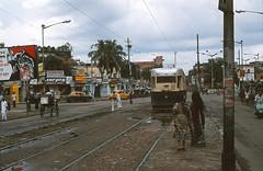 Calcutta 486 Ballygunge 1980 (Guy Arab UF) Tags: calcutta tramways 486 articulated tram ekdalia stop rash behari avenue ballygunge kolkata west bengal india public transport trams