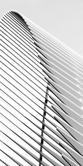 Angie McMonigal Photography-6399-Edit (Angie McMonigal) Tags: abstractarchitecturephotography architecturephotography newyorkcityarchitecturephotography newyorkcityphotography oculus santiagocalatrava