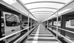 Aparcamiento (Lea Ruiz Donoso) Tags: aparcamiento parking puntodefuga persona vehiculos hx350 sony calle ciudad españa spain madrid monocromo mono urbana blancoynegro bw blackandwhite learuizdonoso learuizdonosophotography