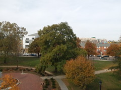 11-11-17 Dayton 26 (Chicagoan in Ohio) Tags: dayton clouds sun sunhalo leaves fallcolor