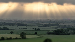 Gloucestershire Rays. (robdando) Tags: gloucestershire frocester landscape nikon uk sun rays light green trees sheep river severn