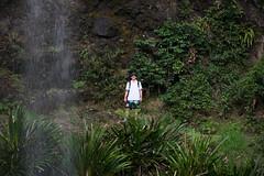 Australia_2018-196.jpg (emmachachere) Tags: subtropical trees hike waterfall boatride springbrook australia rainforest kanagroo animals koala brisbane boat lonepinekoalasanctuary