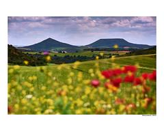 (david Ramalleira) Tags: davidramalleiraphotography davidramalleira paisaje landscape landscapes spring primavera naturaleza natureart naturephotography naturesfinest naturesart nikon guadalajara spain españa