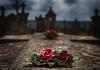 Dernières demeures (Jean-Luc Brunet) Tags: cimetière tombe