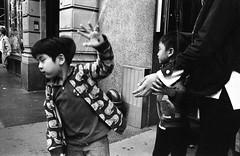 img044 (Anthony Tella) Tags: epson epsonv600 ilford rodinal leica leicam leicam4 35mm 35mmsummicron 35mmsummicronasph street streetphotography documentary documentaryphotography blackandwhite bw blackandwhitefilm nyc newyorkcity 2018