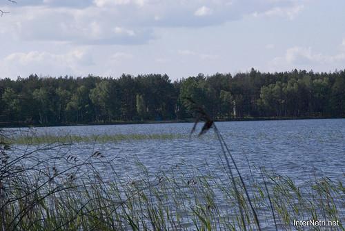 Шацький Національний Природний Парк Озеро Пісочне Берег InterNetri  Ukraine 160
