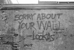 Sorry (dvlmnkillatron) Tags: film rollei35 35mm analog selfdeveloped bw fuji superia 400 champaign rollei35te graffiti sorry tessar 35 40mm bricks plustekopticfilm8200i