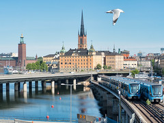 Gamla Stan, City hall, Tbana trains and seagull (chas679) Tags: sweden photowalk city stockholm stockholmslän se