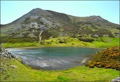 Lago Presente - Isoba - León (Luisa Gila Merino) Tags: landscape verde reflejos serenidad airelibre amarillo pradera maisema