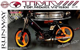 TMV///Exclusive : RED BULL ALPENBREVET