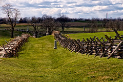 Sunlight on the Sunken Road (SunnyDazzled) Tags: uscivilwar history antietam battlefield sharpsburg maryland field grass sunkenroad bloodylane visitorscenter tourism wormrail snakesplitrail fence memorial markers