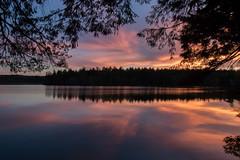 134/365: Spring sunset