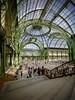 Grand Palais - 1 (Guillaume WOLFF) Tags: grandpalais 15mm irix d610 paris